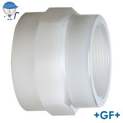 Standard adaptor socket female thread Rp pvdf