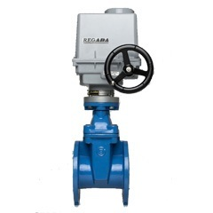 GATE VALVE WITH ELECTRIC ACTUATOR PN16 (F4)